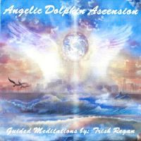 Dolphin Guided Meditations (MP3) -